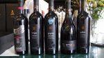 目黒のピンクカミラでイスラエルワイン試飲会|イスラエルワインを楽しむ