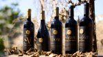 イスラエルワイン|装いを一新したプサゴットのフルボディの高級赤ワイン達